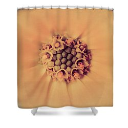 Flower Beauty IIi Shower Curtain by Marco Oliveira
