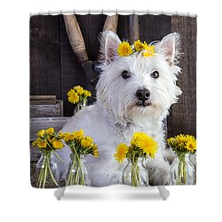 Flower Child Shower Curtain by Edward Fielding