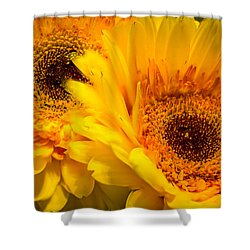 Shower Curtain featuring the photograph Flower Eyes by Steven Santamour