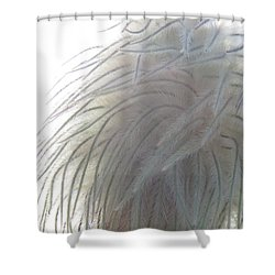 Shower Curtain featuring the photograph Floral Feathers by Ramona Johnston