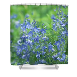 Flower Frenzy Shower Curtain by Kim Hojnacki