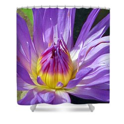 Flower Garden 70 Shower Curtain