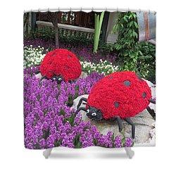 Shower Curtain featuring the photograph Flower Garden Ladybug Purple White I by Navin Joshi