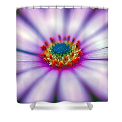 Flower In The Spring Shower Curtain