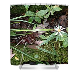 Flower In The Woods Shower Curtain