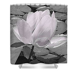 Flower Lilly Pad Shower Curtain by Steve Archbold