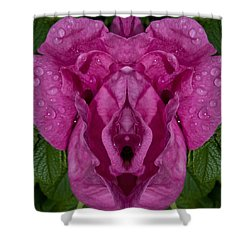 Shower Curtain featuring the photograph Flower Of Venus 2 by WB Johnston