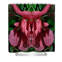 Shower Curtain featuring the photograph Flower Of Venus 4 by WB Johnston
