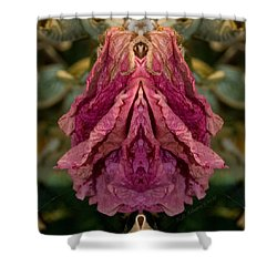 Shower Curtain featuring the photograph Flower Of Venus 8 by WB Johnston