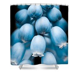 Flower Pods Shower Curtain by Shane Holsclaw