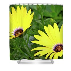 Flower Power Shower Curtain by Ed  Riche