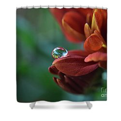 Flower Reflection Shower Curtain