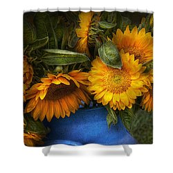 Flower - Sunflower - The Suns Have Risen  Shower Curtain by Mike Savad