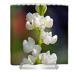 Flower Shower Curtain by Tiffany Erdman
