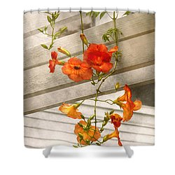 Flower - Trumpet Melodies Shower Curtain by Mike Savad