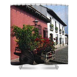 Flower Wagon Antigua Guatemala Shower Curtain