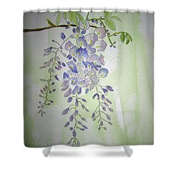 Flowering Wisteria Shower Curtain