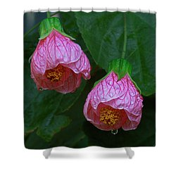 Flowering Maple Shower Curtain