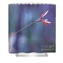 Flowering Moss Shower Curtain