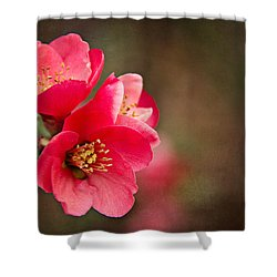 Shower Curtain featuring the digital art Flowering Quince by Lana Trussell
