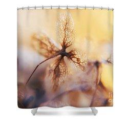 Flowers 3 Shower Curtain by Justyna JBJart