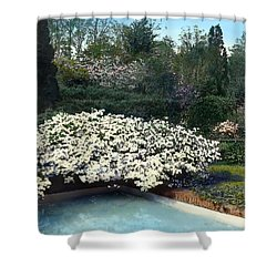 Flowers And Pool Shower Curtain by Terry Reynoldson