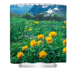 Flowers Shower Curtain by Anonymous