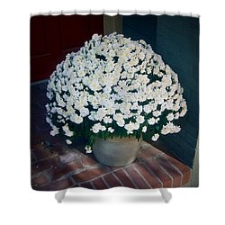 Flowers At The Door Shower Curtain by Brian Wallace