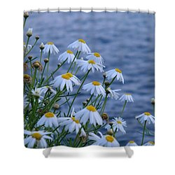 Shower Curtain featuring the photograph flowers by the Ocean by  Ruth Jolly