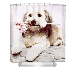 Flowers For My Best Friend. Shower Curtain by VRL Art