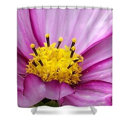 Flowers For The Wall Shower Curtain