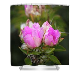 Shower Curtain featuring the photograph Flowers For You by Amy Gallagher