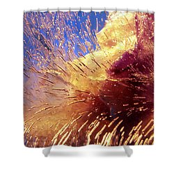 Shower Curtain featuring the photograph Flowers In Ice by Randi Grace Nilsberg