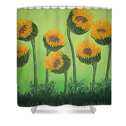 Flowers In Menopause  Shower Curtain