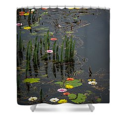 Flowers In The Markree Castle Moat Shower Curtain