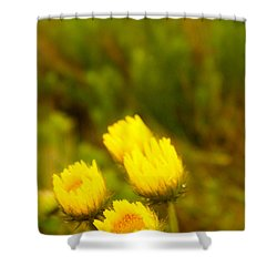 Flowers In The Wild Shower Curtain by Alistair Lyne