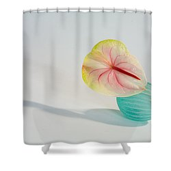 Flowers In Vases2 Shower Curtain