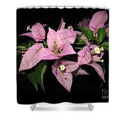 Flowers Island Lembongan Shower Curtain by Sergey Lukashin