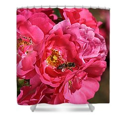 Flowers-roses-pink-bee Shower Curtain by Joy Watson