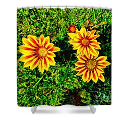Flowers Thousand Trails  Shower Curtain by Bob and Nadine Johnston