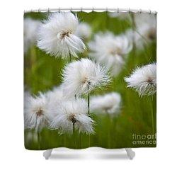 Flowery Cotton Shower Curtain by Heiko Koehrer-Wagner