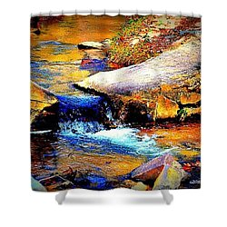 Shower Curtain featuring the photograph Flowing Creek by Tara Potts