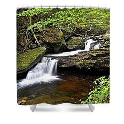 Flowing Falls Shower Curtain by Frozen in Time Fine Art Photography