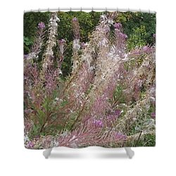 Fluffy Flowers Shower Curtain by John Williams
