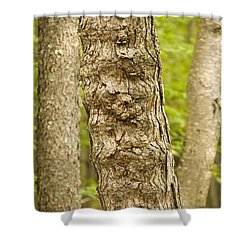 Fluted Tree Shower Curtain