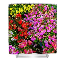 Flwrs Test 1 Shower Curtain by Terence Morrissey