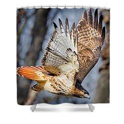 Fly Away Shower Curtain