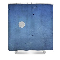Fly Away Shower Curtain by Darren Fisher
