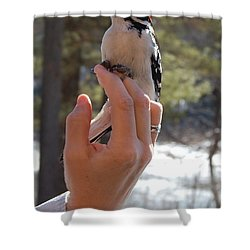 Shower Curtain featuring the photograph Fly Away by Mim White