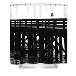 Shower Curtain featuring the photograph Fly Away by Sonya Lang